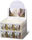 Wkład Bolsius 50x50 zapach magnolia a'1/18/2